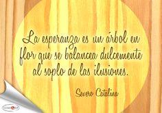 """""""La esperanza es un árbol en flor que se balancea dulcemente al soplo de las ilusiones."""" Severo Catalina  #frases"""