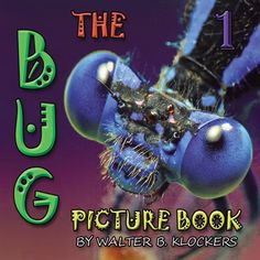 """""""The Bug Picture Book 1,"""" $12.95 from HP MagCloud.  Macro photography pictures of bugs for kids and adults."""