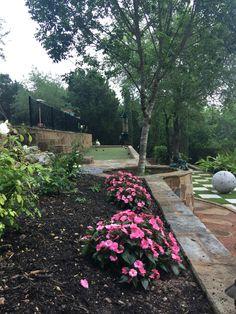 Austin Tx Beautiful Backyard Our English Garden