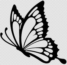 Learn how to draw Pretty butterfly drawing Butterfly Outline, Butterfly Sketch, Butterfly Stencil, Butterfly Template, Butterfly Tattoo Designs, Butterfly Wall Stickers, Wall Stickers Window, Tattoo Stencils, Art Drawings Sketches