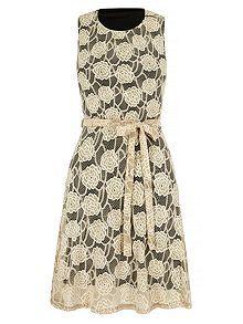Lace Contrast Midi Dress