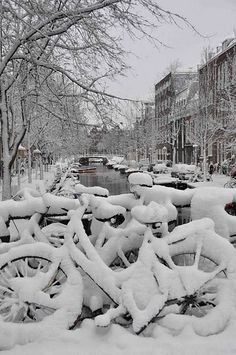snow covered bikes in Amsterdam.