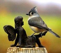 bird perching on a garden fairy