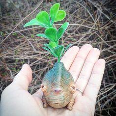 Sweet mandrake 🌱🌷🌱 #mandrake #mandragora #magicalcreatures #plantsofinstagram #plants #collectibles #littlemonster #cute #creepy #creepycute #fantasy #fantasycreature #polymerclay #wip #sculpey #sculpture #handmade #fimo #etsy #clay #mo_creatures #mosweetfactory #niezchinzpasji #ooak #originalart #ooaktoy #ooakdoll #arttoy #artdoll #art