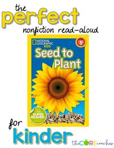 Seed to Plant read-aloud and activities perfect for Kindergarten.