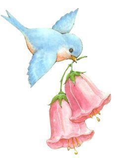 Cute Animal Drawings, Cool Art Drawings, Bird Drawings, Art Drawings Sketches, Easy Drawings, Watercolor Paintings For Beginners, Bird Artwork, Bird Illustration, Watercolor Bird