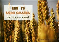 How to Soak Grains - and Why You Should Be Doing It. Soaking grains is simple and important - come find out why!