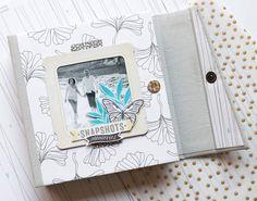 Mini album Snapshots, l'intégrale