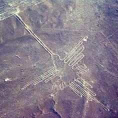 NAZCA - PEROU. Le Colibri////Les tracés composés de figures géométriques sillonnent la pampa sur une distance de plus de 500 km². Ceux de NAZCA sont les plus célèbres. Tracés en déblayant la fine couche de pierres sombres couvrant la pampa désertique pour mettre à nu le sol plus clair. Ces tracés terrestres, destinés à être vus du ciel, existent dans de nombreux pays, aussi, en Europe. Selon le sol de la région, des techniques différentes ont été utilisées.