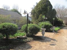 Amber Avenue Guesthouse, situated on a farm very close to Howick Village along the famous Midlands Meander in KwaZulu-Natal. Kwazulu Natal, Bustle, Cows, Fields, Amber, Restaurants, Peace, Popular, Activities