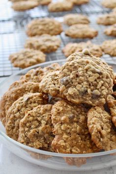 "Chewy Oatmeal Cookies I | ""These are the yummiest cookies ever! They taste like Mrs. Fields cookies."" #cookies #cookierecipes #bakingrecipes #dessertrecipes #cookieideas No Bake Cookies, Oatmeal Cookies, Yummy Cookies, Chocolate Chip Cookies, Sugar Cookies, Baking Recipes, Cookie Recipes, Dessert Recipes, Cookie Decorating"