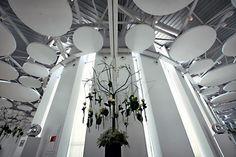 Centro de Congresos Myrtus
