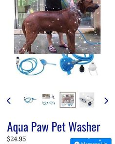 . Aqua, Map, Pets, Water, Location Map, Maps, Animals And Pets