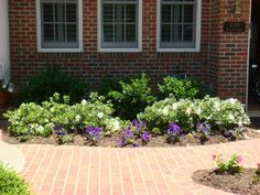 shrubs for front of house | Getting Your House Ready to Sell Series: Plants & Shrubs by Front Door