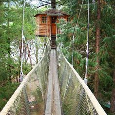 On the way to hug a Redwood (see post before last), we stayed overnight in this treehouse at Out'n'About. Cool fun, but husband couldn't cope with no TV, internet, mini bar...and afraid of heights!!!! Seriously though, he loved it. Hosts were great!