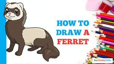 Popular Cartoons, Step By Step Drawing, Ferret, Animal Drawings, Easy Drawings, Cartoon Characters, Art Projects, Ferrets, Animal Design