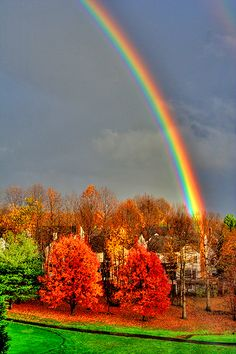VIRGINIA - Rainy day -   by Bidyottam Mittra