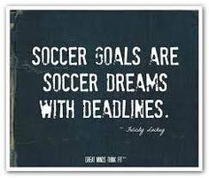Soccer goals...