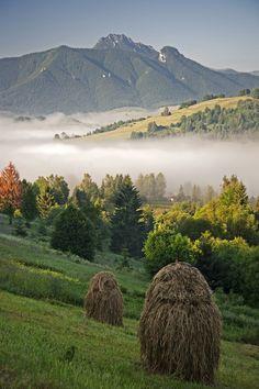 Slovakia - Igor Supuka 64 - Europe, Slovakia, National Park Low Fatra, Rozsutec hill
