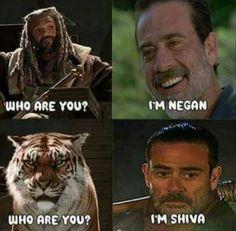 The Walking Dead #fYEAH #Shiva #twd