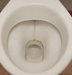 Toilet bowl before small. Toilet Bowl, Plates, Tableware, Kitchen, Licence Plates, Cuisine, Dishes, Dinnerware, Griddles