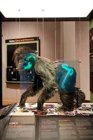 """Vor große Objekte eine Scheibe mit """"Röntgenblick"""" hängen, um z. B. Technik u.ä. hinter der Oberfläche zu zeigen."""
