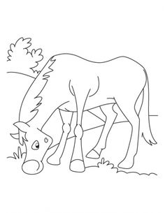 how to draw a horse head for kids Free drawing instructions
