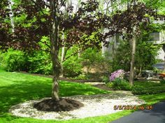 Landscape Job #14 - small creek gravel and mulch bed maintenance; residential landscaping.