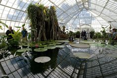 interior of conservatory of flowers