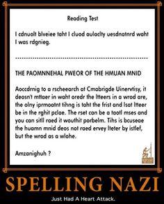 Spelling Nazi