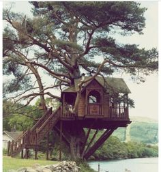 Treehouse ...but would i live in one?
