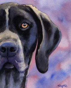 German Short Haired Pointer Dog Art Print Signed by k9artgallery, $12.50