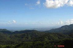 Mt. Britton, El Yunque