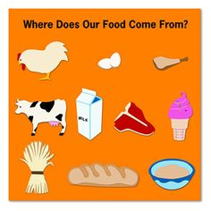 Where does our food come from? | IMC-Idea Factory Creations ...