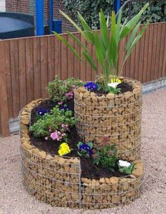 Tying rocks and plantings together makes great contrast!