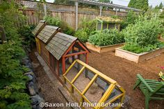 beautiful!  This is the backyard, city garden of Jennifer Carlson. It might even be called a small urban farm with chickens, rabbits, doves, raised beds of organic vegetables and herbs.  Copyright:© Saxon Holt/PhotoBotanic