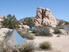 joshua tree national park - Google Search