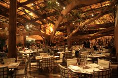 Figueira Rubaiyat, my favorite restaurant in Sao Paulo. A huge fig tree in the middle of it all!