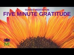 5 Minute Guided Meditation for Gratitude / Mindful Movement 5 Minute Meditation, Free Guided Meditation, Meditation Practices, Meditation Music, Mindfulness Meditation, Mindfulness Activities, Anxiety Relief, Stress And Anxiety, Morning Affirmations