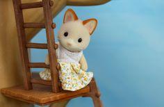 Sylvania Grove – Miniature toy photography of Sylvanian Families dioramas Toys Photography, Family Photography, Sylvanian Families, Miniatures, Animals, Dolls, Home Decor, Dioramas, Baby Dolls