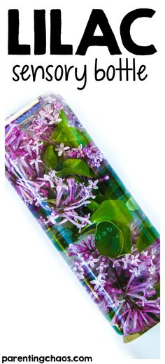 Lilac Sensory Bottle - a great way for your child to play with and discover spring flowers up close! a great activity to explore the natural world and bring the outside in.