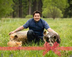 Gutschein ♥ Schweine streicheln: Verschenke eine saugute Zeit Fictional Characters, Cuddle, Gift Cards, Animales, Fantasy Characters