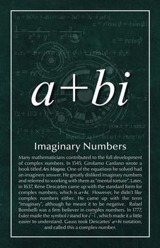 Imaginary Numbers - Math Poster by Math Posters Theoretical Physics, Physics And Mathematics, Math Art, Fun Math, Maths, Math Poster, Academic Poster, Math Quotes, Montessori Math
