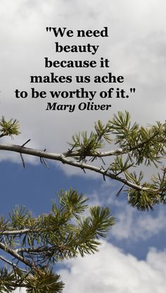 """We need beauty because it makes us ache to be worthy of it.""  Mary Oliver -- Examine inspiring touchstone quotes at http://www.examiner.com/article/over-thirty-touchstone-quotes-for-wedding-vows-and-speeches"