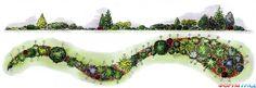 Ленточный цветник из хвойных растений