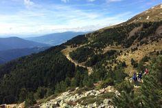 Wandern in Südtirol: Die besten Touren für Einsteiger Grand Canyon, Mountains, Nature, Travel, Woodland Forest, Viajes, Naturaleza, Destinations, Grand Canyon National Park
