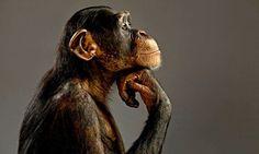 El pensador constante (Rengel, David) Intentando pensar en lo impensable (Virgi, Lucho) Vive pensando y no soñando (Lucía, Victor, Piña)