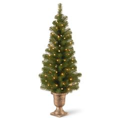 National Tree MC730840 Montclair Spruce Entrance Tree in 10Inch BlackGold Plastic Pot with 50 Clear ULLights 4Feet * Learn more by visiting the image link.