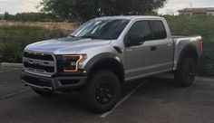 2017 Raptor Color Options (From Ford Dealer) - FORD RAPTOR FORUM - Ford SVT Raptor Forums - Ford Raptor
