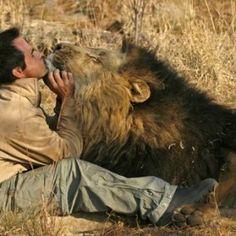 L'uomo che sussurrava ai leoni. su www.youanimal.it